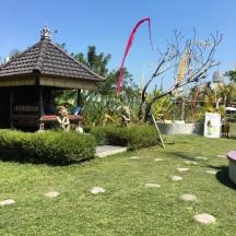The Moksha Ubud garden